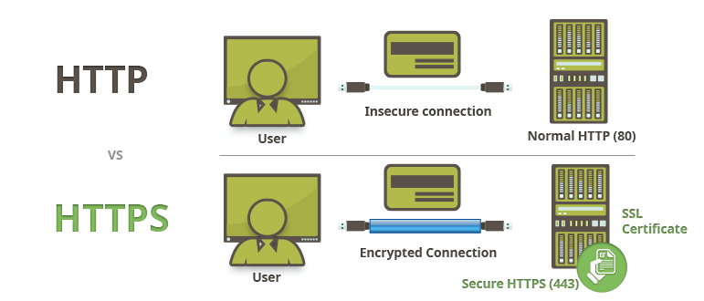 Website Security SSL Protection