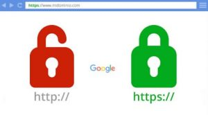 How do I Protect My Website