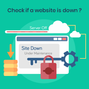 check if website is down